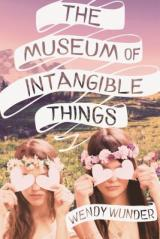 THE MUSEUM OF INTANGIBLE THINGS: An Epic Love Story