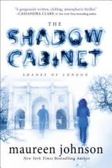 THE SHADOW CABINET: Simply a MustRead
