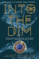 INTO THE DIM: A Great Story With Time Travel!